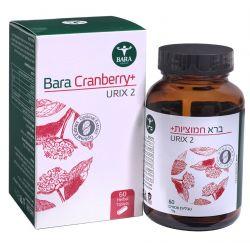 Cranberry plus - חמוציות פלוס