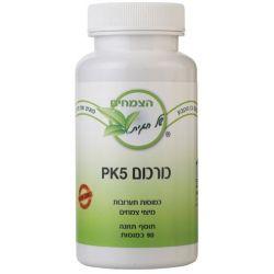 כורכום PK5 לסיוע בתמיכה חיסונית